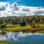 Odkrywamy Puszczę Knyszyńską – Tatarzy, żubry, przyroda...